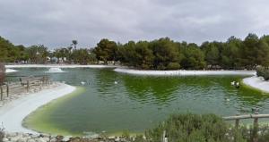 estanque UA